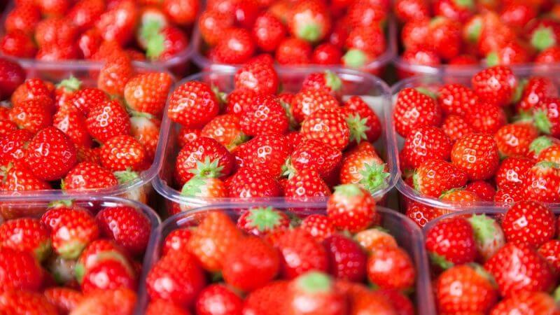 jordbær plast emballage